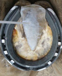 Hardening with Imprint Shoe Freezer